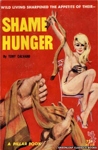 Pillar Books PB850 - Shame Hunger by Tony Calvano, cover art by Robert Bonfils (1964)