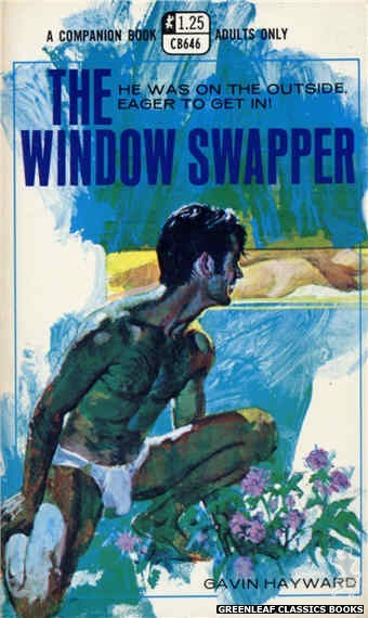 Companion Books CB646 - The Window Swapper by Gavin Hayward, cover art by Robert Bonfils (1970)