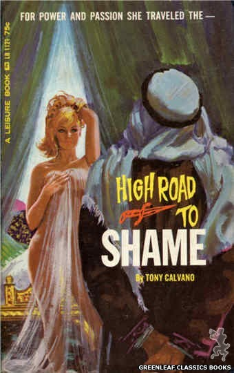 Leisure Books LB1121 - High Road to Shame by Tony Calvano, cover art by Robert Bonfils (1965)
