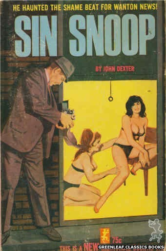 Nightstand Books NB1765 - Sin Snoop by John Dexter, cover art by Unknown (1965)