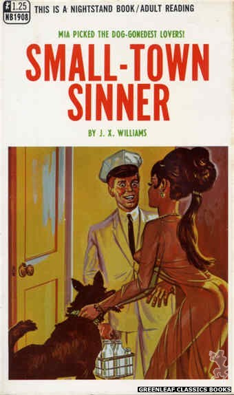 Nightstand Books NB1908 - Small-Town Sinner by J.X. Williams, cover art by Tomas Cannizarro (1968)
