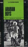 PR341 Arabian Boys by C.J. Bradbury Robinson (1972)
