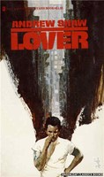 3045 Lover by Andrew Shaw (1973)