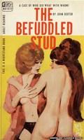The Befuddled Stud